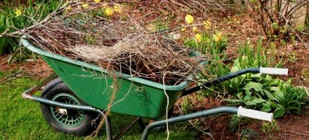 Wheelbarrow Filled with Spring Yard Waste